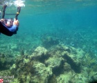 Filming while snorkeling