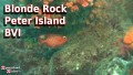 Blonde Rock - Peter Island - BVI