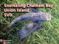 Snorkeling Chatham Bay, Union Island, SVG