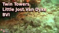 Twin Towers - Little Jost Van Dyke - BVI